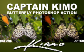 captainkimobutterflyphotoshopaction